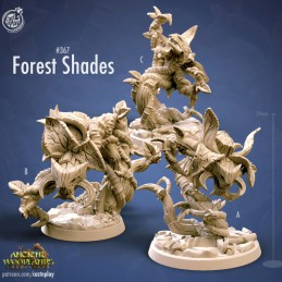 Forest Shades