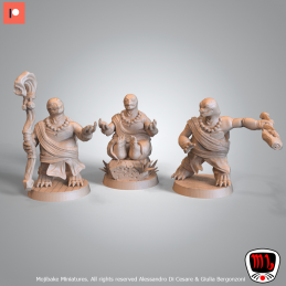 Turtle Monks Set - Three...