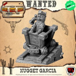 Nugget Garcia The Miner