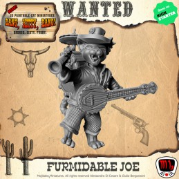 Furmidable Joe One Man Band
