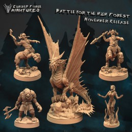 Battle for the High Forest Set