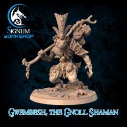 Gwembesh the Gnoll Shaman